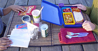 The Cost Of School Lunch Packaging to Society