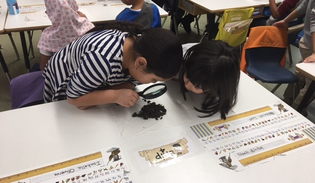 New Rochelle Trinity First Graders Study Worms With Great Enthusiasm