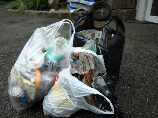 Two Dogs, One Walk Around The Block And Three Bags Of Trash